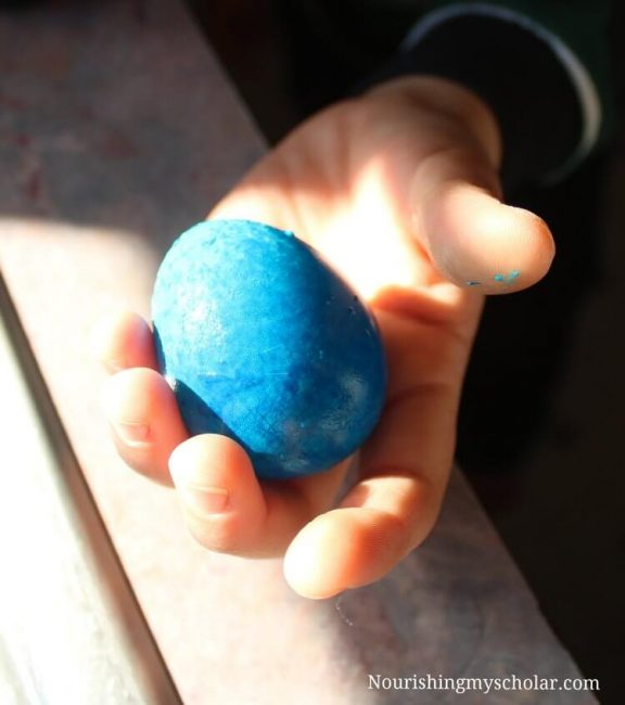 Easy Rubber Egg Experiment