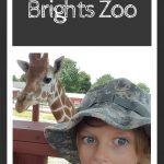 Brights Zoo