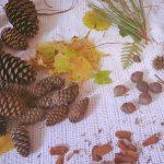 Making Nature Fairies