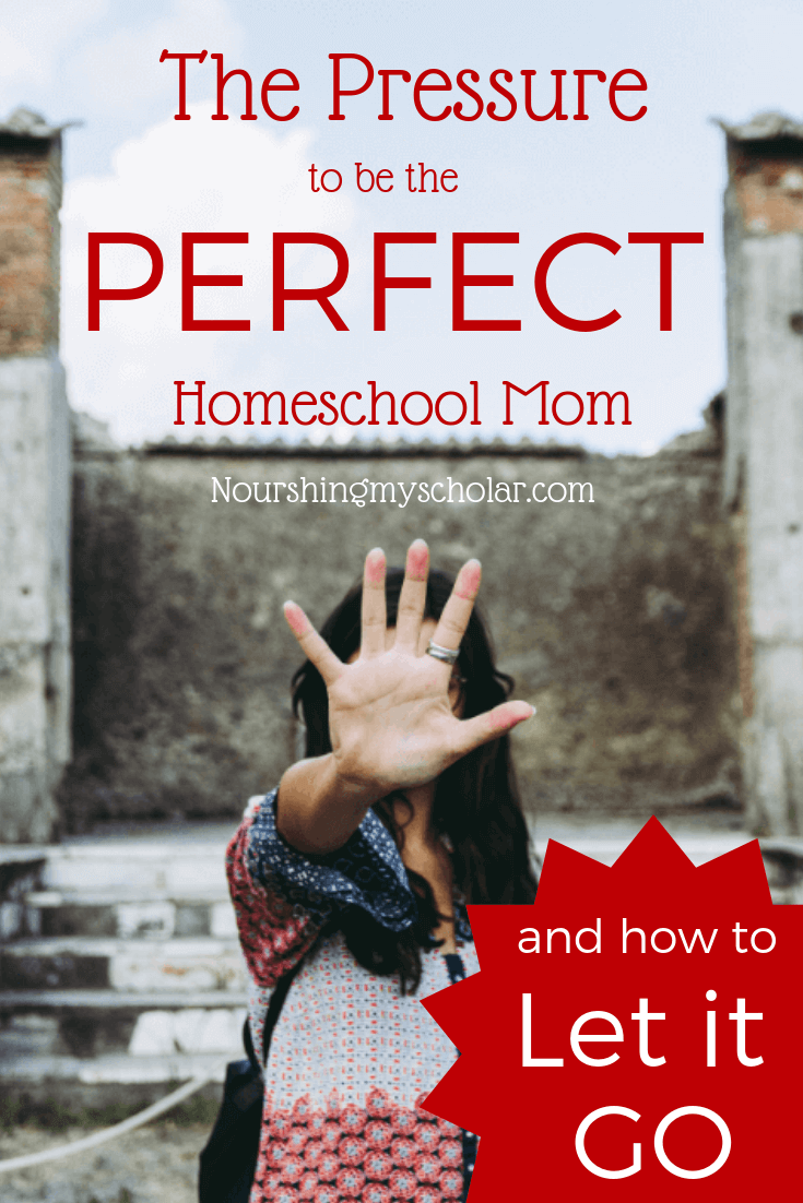 The Pressure to be the Perfect Homeschool Mom