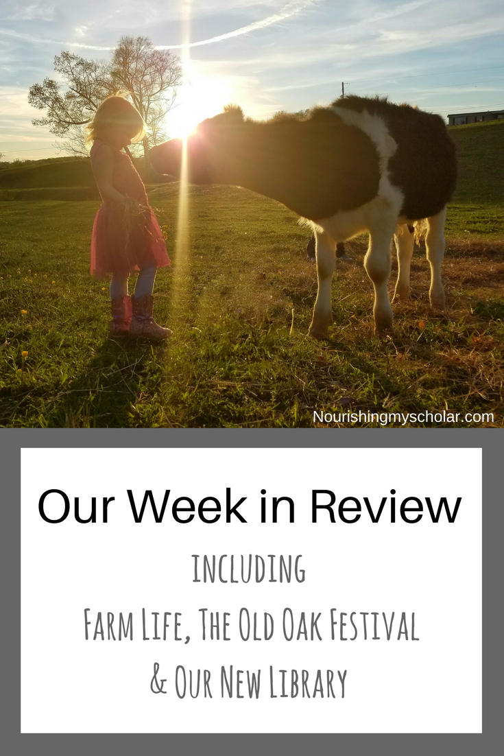 Our Week in Review