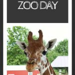 Zoo Day!