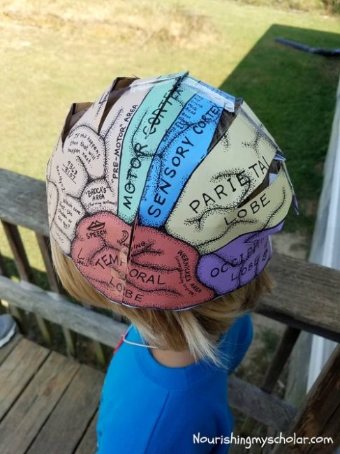 photo about Brain Hat Printable named Exciting Thoughts Things to do for Children ~ Nourishing My University student