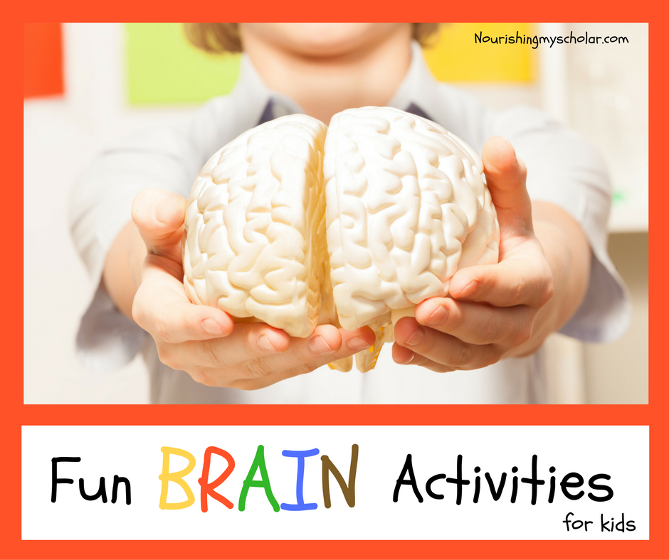 Fun Brain Activities for Kids ~ Nourishing My Scholar