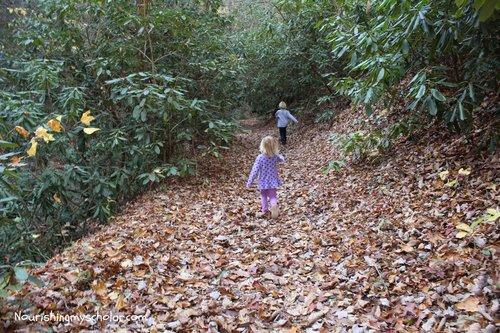Hiking Along Horse Creek
