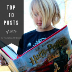 Top 10 Posts of 2016 for Nourishing My Scholar