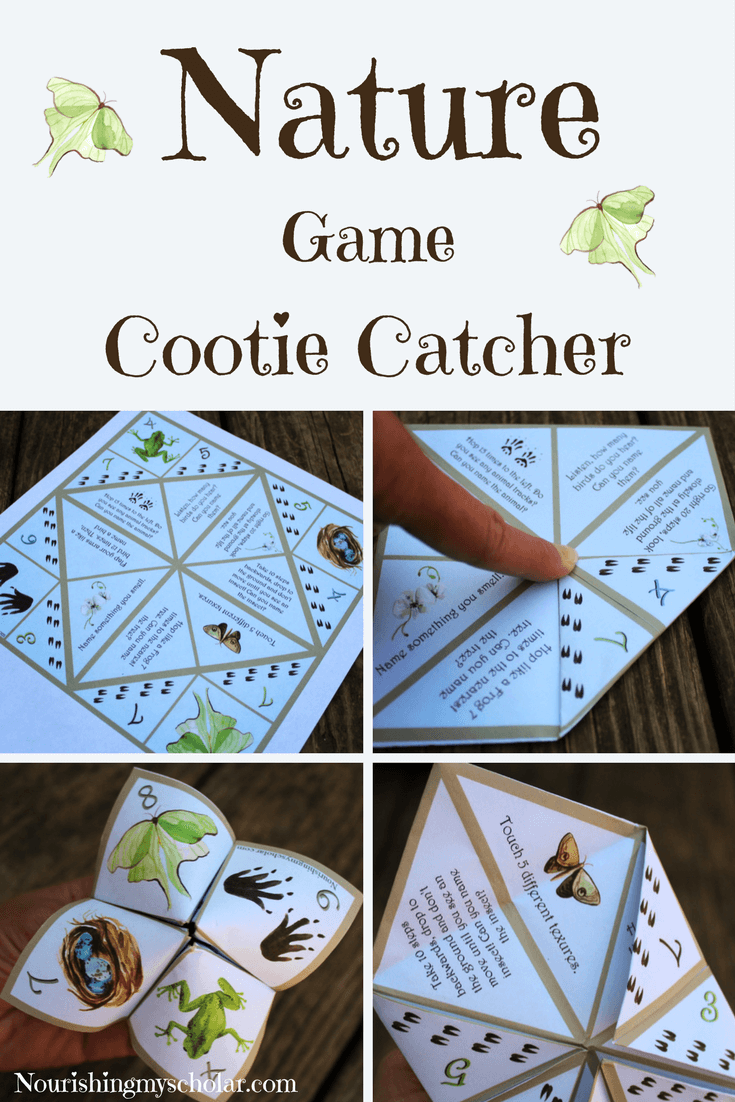Nature Game Cootie Catcher: This cootie catcher is meant to help children use their senses (sight, smell, hearing, and touch) as they test their knowledge and explore the natural world around them. #homeschooling #naturestudy #cootiecatcher #nature #science #printable #homeschool
