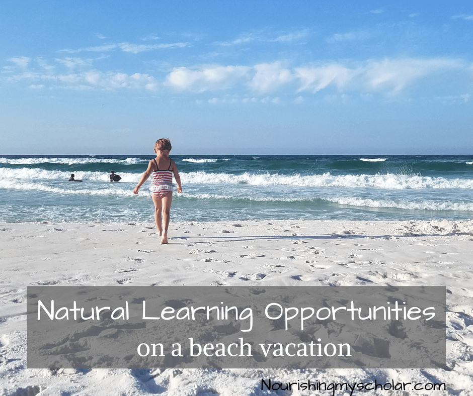 natural learning opportunities on a beach vacation nourishing my
