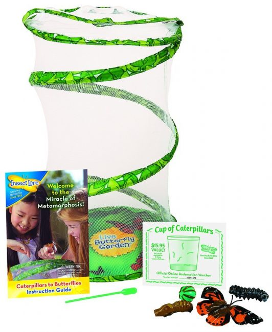 30 Fun Nature Gift Ideas for Kids