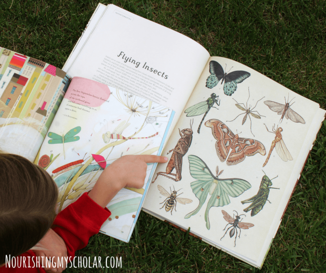 Exploring Nature with Illustrated Children's Books