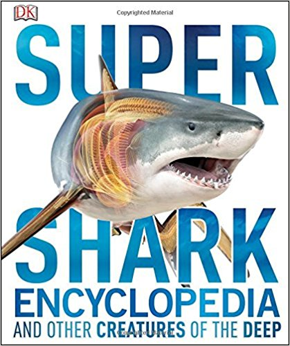15 Shark Books for Shark Loving Kids