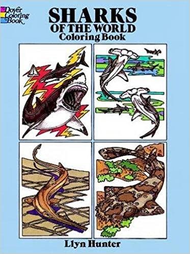 15 Shark Books for Shark Loving Kids