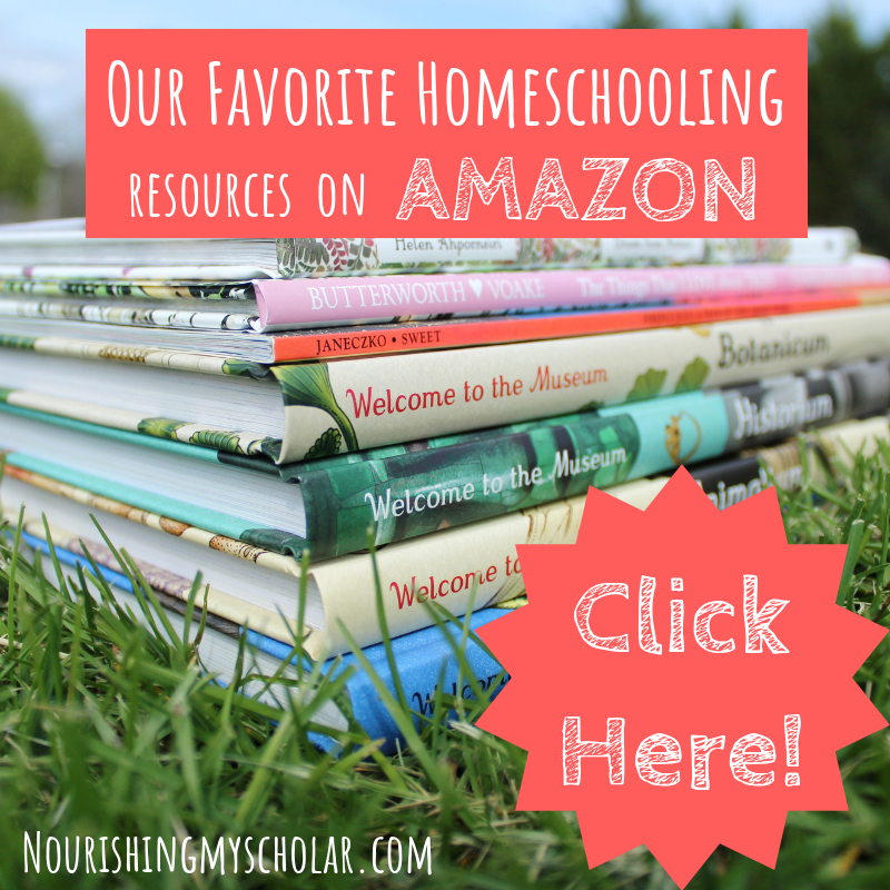 Our Favorite Homeschooling Resources on AMAZON