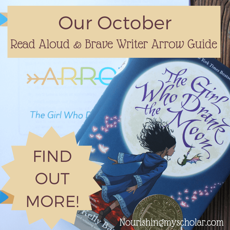Learn more about how we use Brave Writer in our Homeschool!