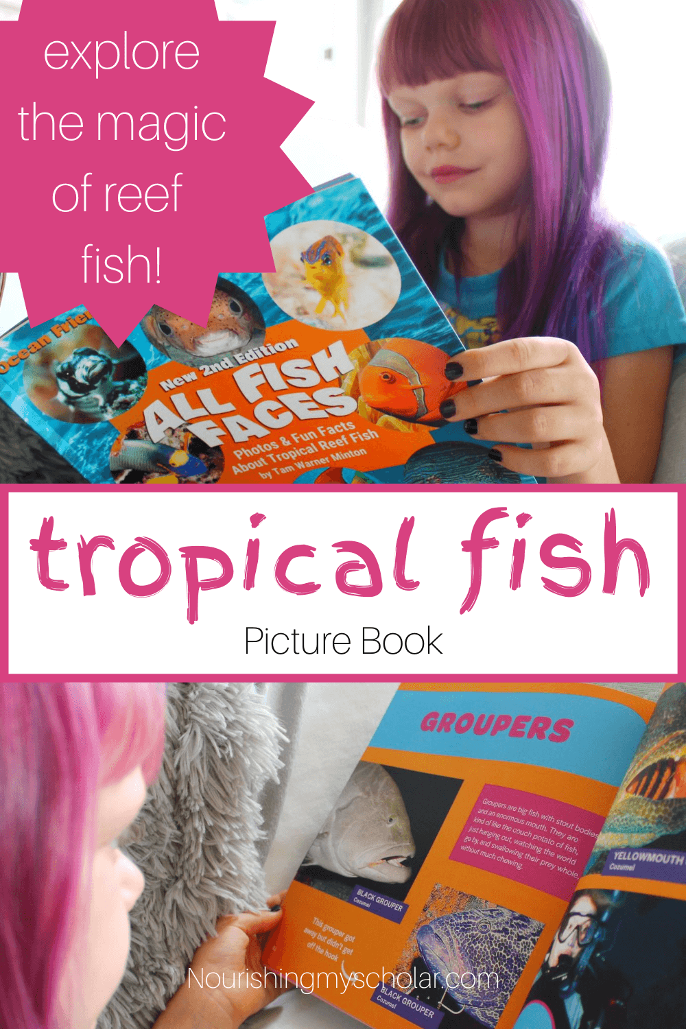 Tropical Fish Picture Book: Get your children excited about our oceans and seas with this incredible tropical fish picture book for kids! #kidlit #picturebooksforkids #teachwithbooks #nonfictionbooksforkids #fishbooksforkids #fishpicturebook