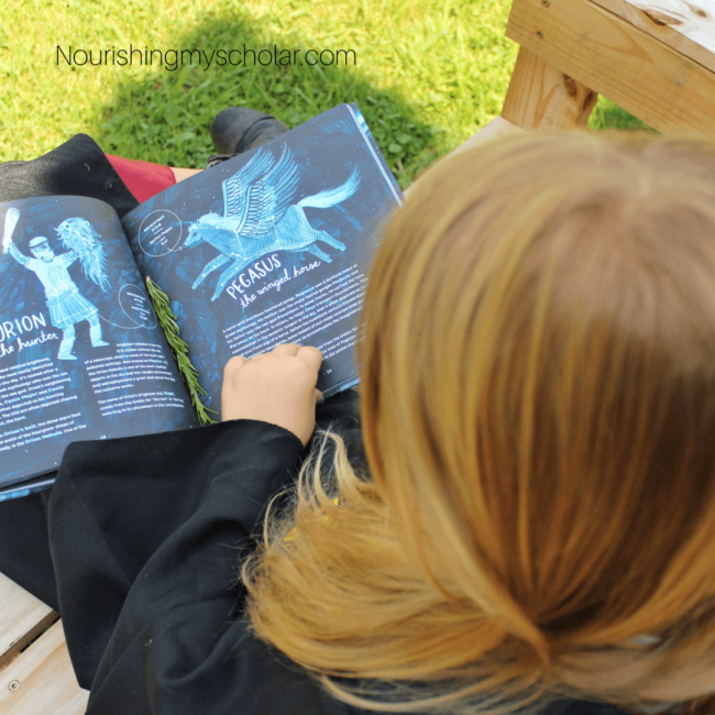 Harry Potter Homeschool Perfect for Young Wizards
